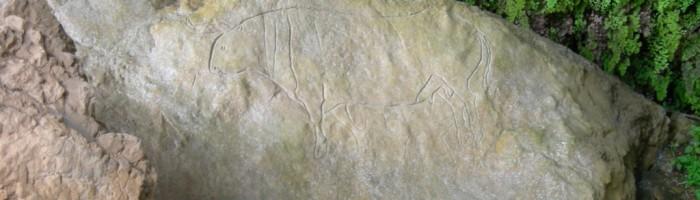 Fig. 10 Papasidero. Grotta del Romito. Immagine incisa su roccia