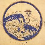 Mappamondo-di-Al-Idrisi